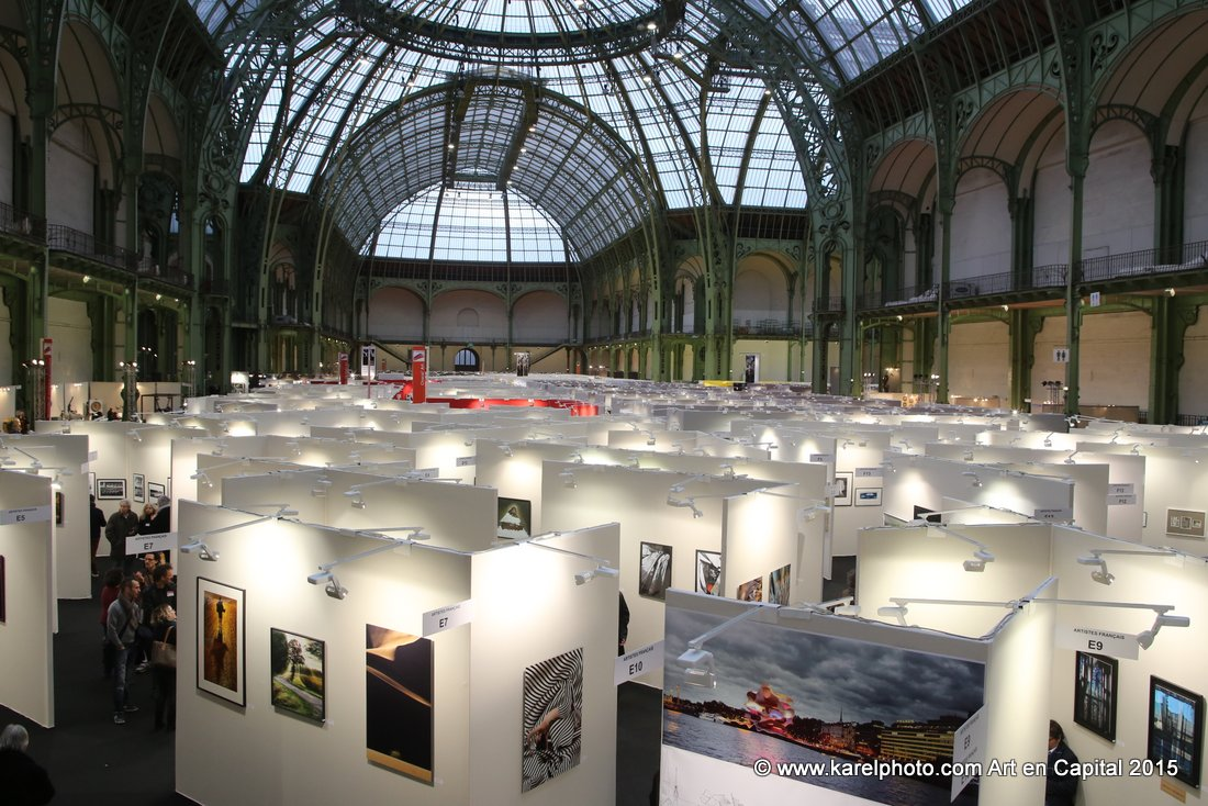 Salon Art en Capital 2015. – Photo Art Sculpture